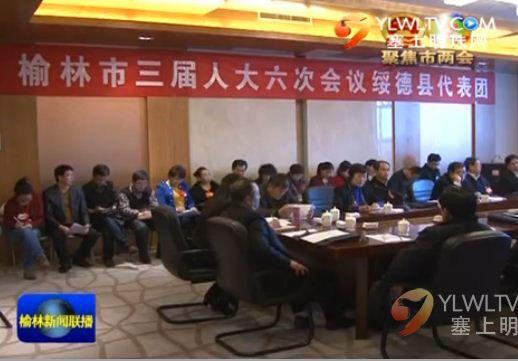 市人大代表分别参加各代表团审议