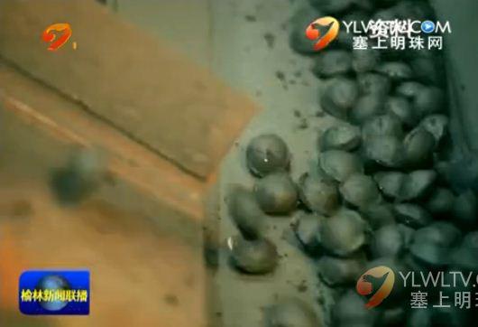 神木兰炭型煤转型升级 进入京津冀地区治霾