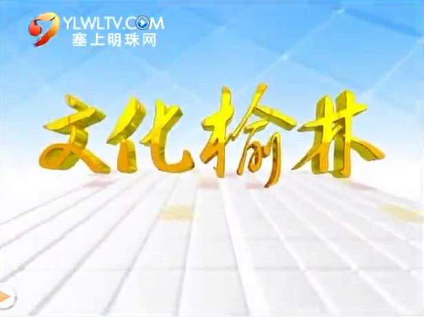 【文化榆林】青年画家——高海平(下) 2018-05-19